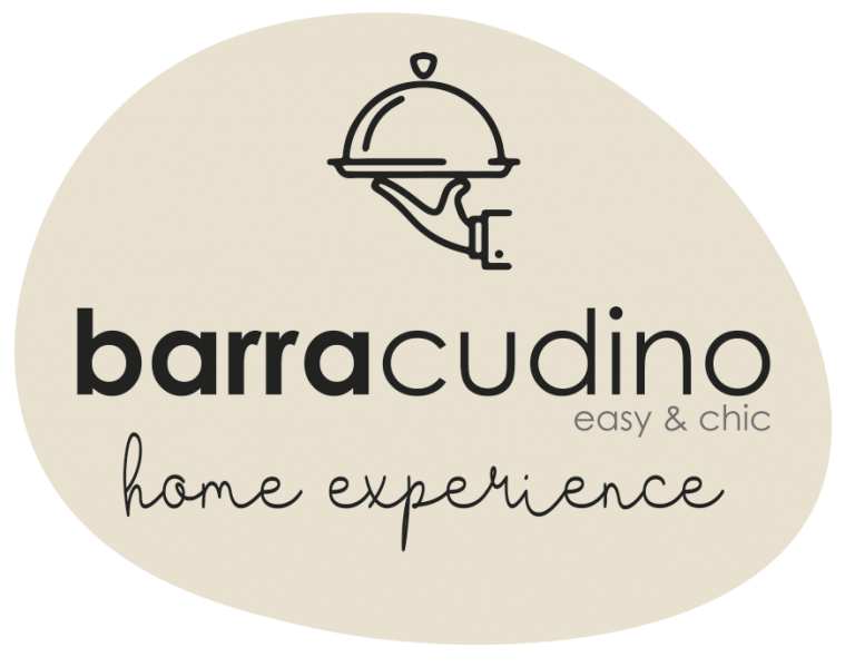 logo Barracudino_HE